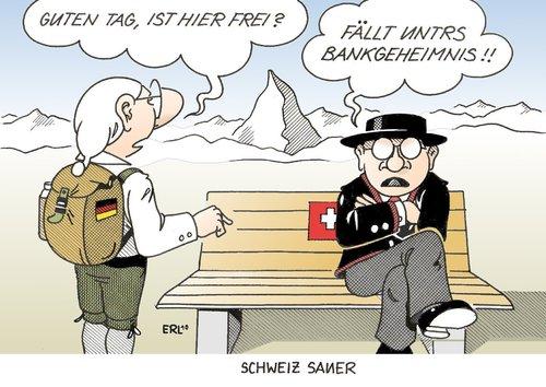 schweizer steuern